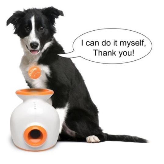 Afbeeldingen van Doggy Fun Automatic Ball Launcher