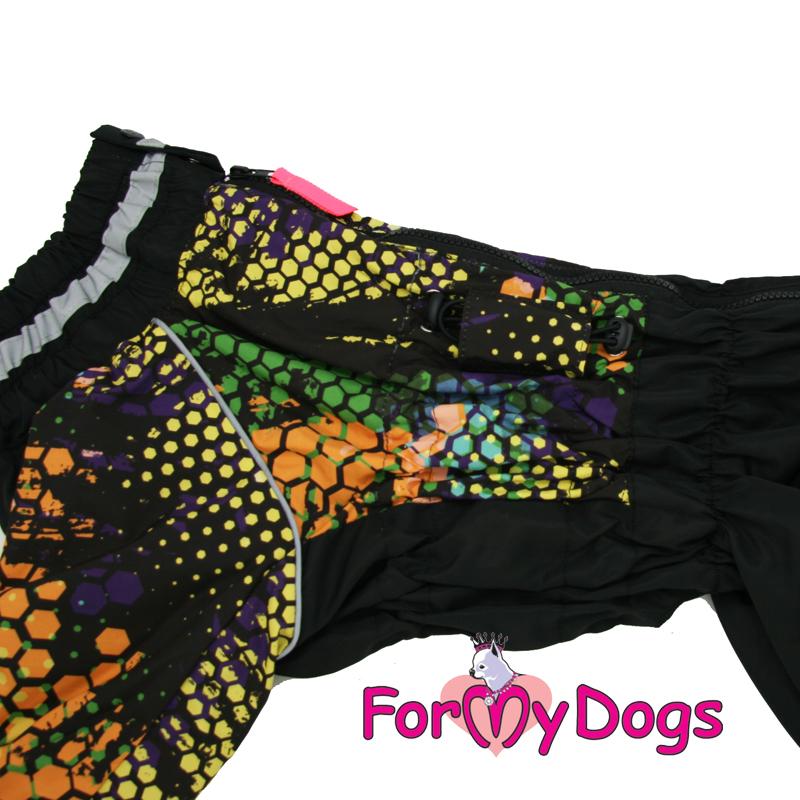 Afbeeldingen van ForMyDogs Flow